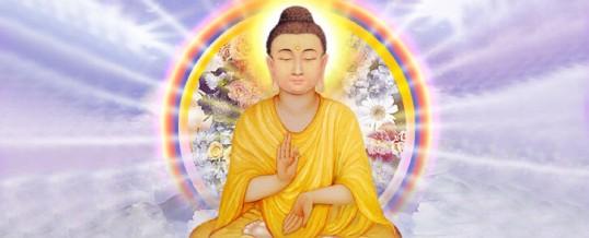 Retreat (Retragere Spirituala) – Revelarea Inimii Spirituale