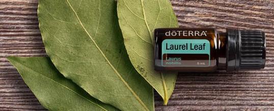 Uleiul esențial LAUREL LEAF (frunze de dafin) de la doTERRA