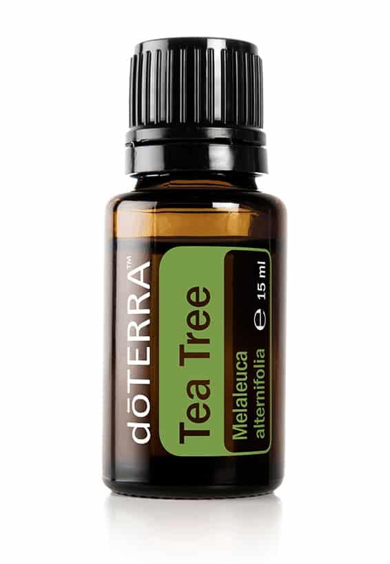Melaleuca (Tea Tree) doTERRA