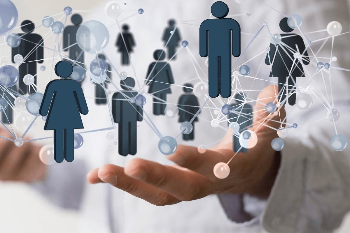 network marketing (MLM)